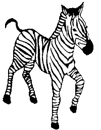 Black and white line drawing of a zebra.